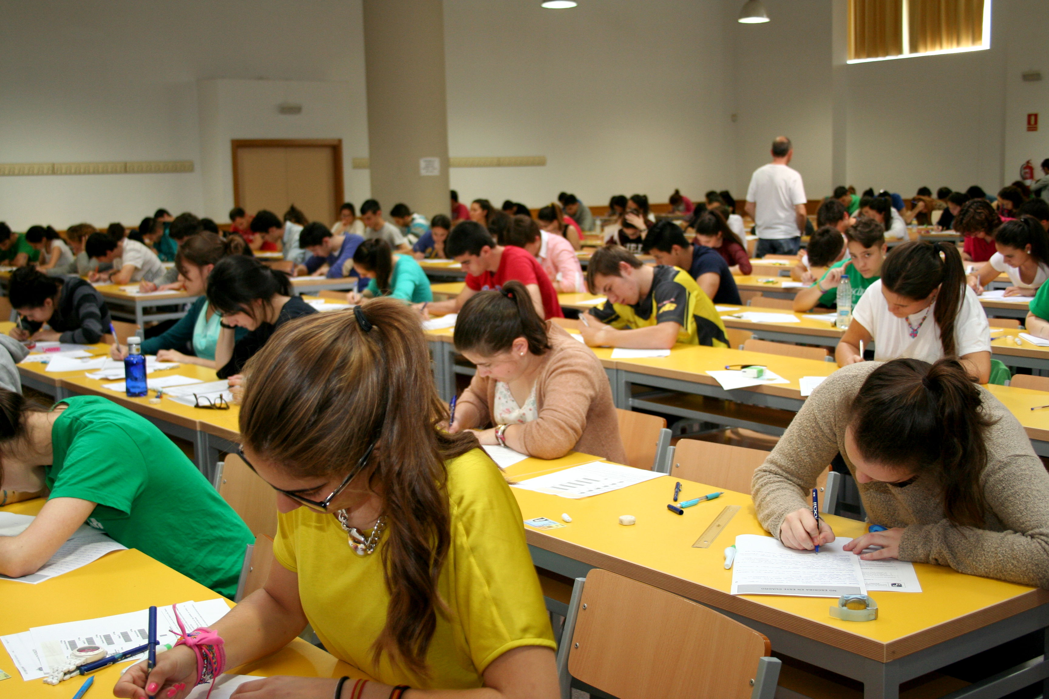 Resultado de imagen de diversidad en las enseñanzas no universitarias