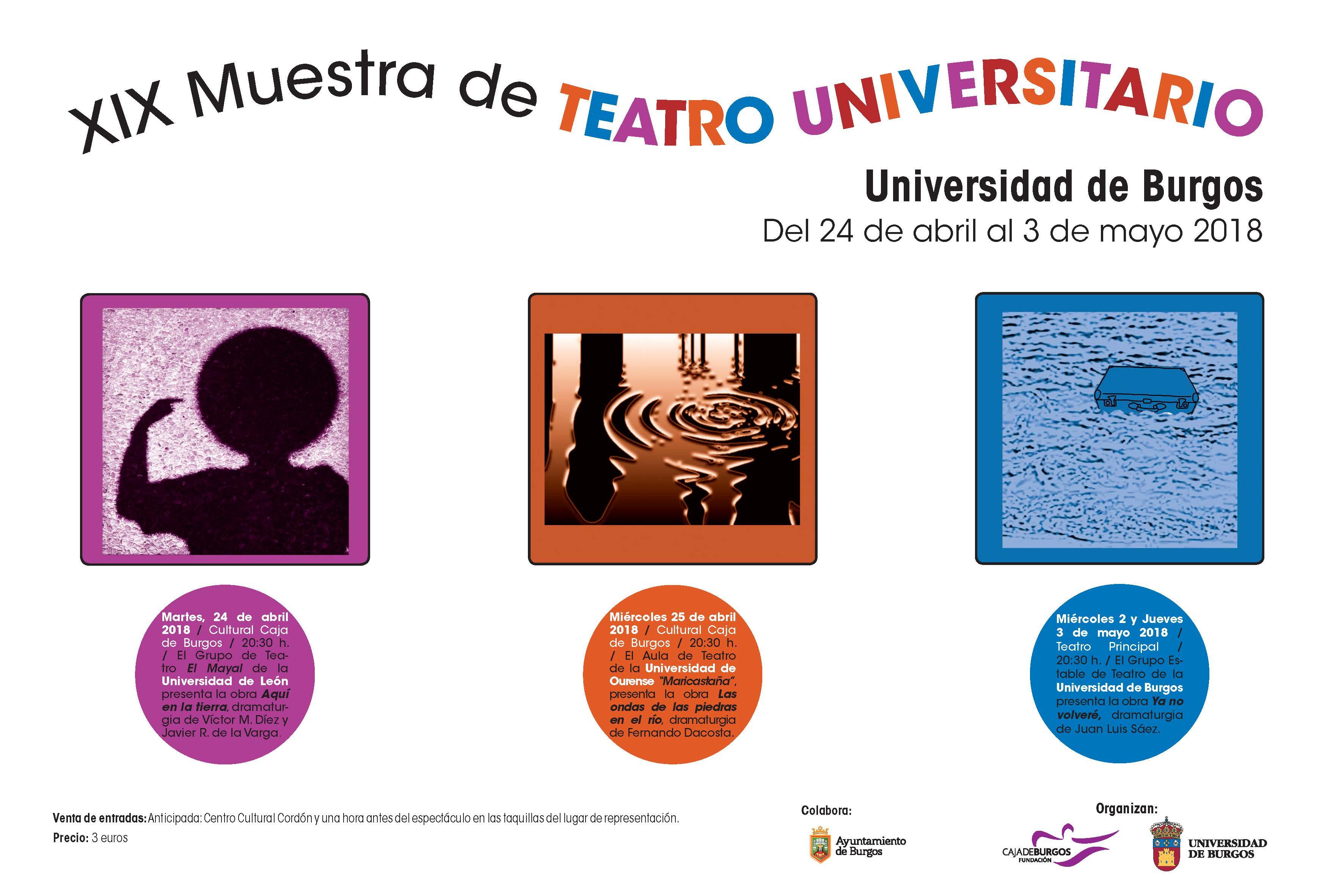 Vistoso Curriculum Profesional Del Teatro Viñeta - Ejemplo De ...