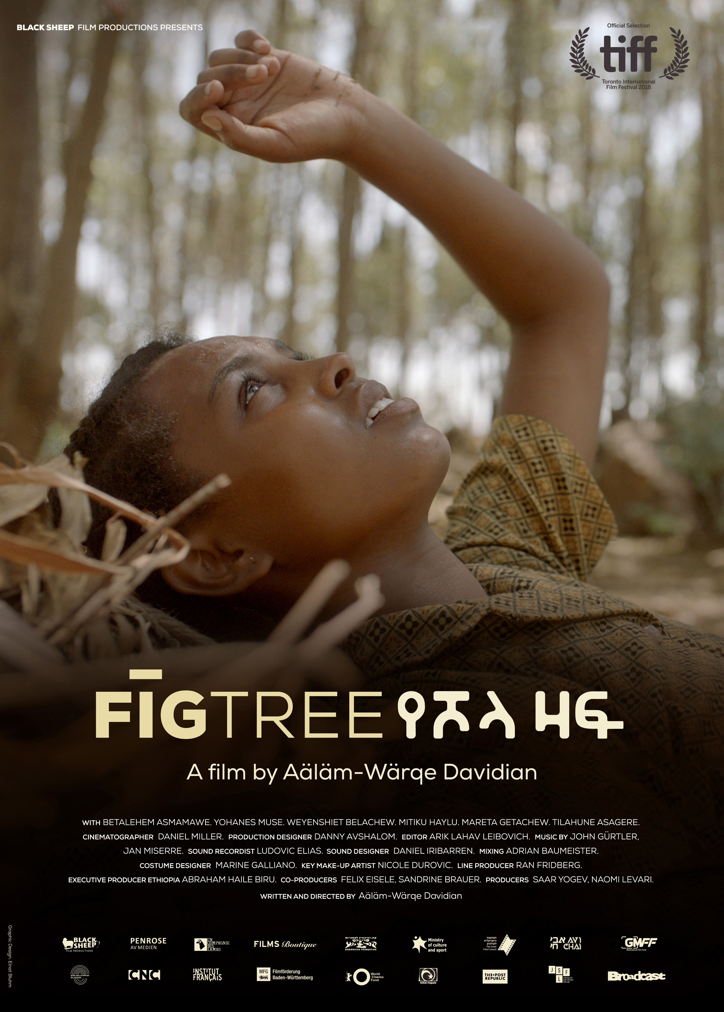 foto fig tree