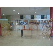 Exposición talento y diversidad