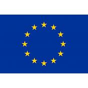 UE Flag