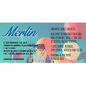 Disfraces Merlín
