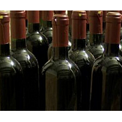 Máster en Cultura del Vino: Enoturismo en la Cuenca del Duero