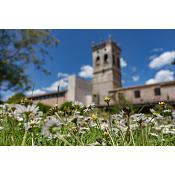Medio ambiente en el Hospital del Rey - UBU/Diego Herrera