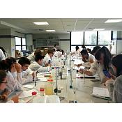 Un grupo de alumnos de colegio Aurelio Gómez Escolar realizó un taller de enocultura