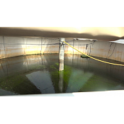 Un estudio indica que las microalgas pueden ser utilizadas como biofertilizantes