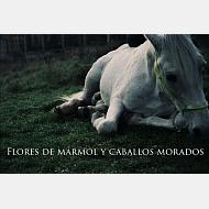 caballos morados
