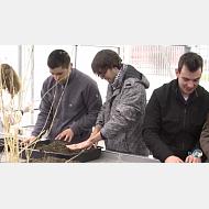 Grado en Ingenieria Agroalimentaria y del Medio Rural