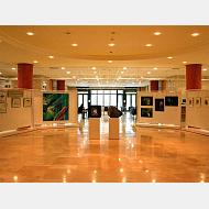 Hall de la Biblioteca
