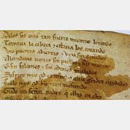 Manuscrito del Cantar del Mío Cid