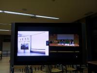 Estudiantes del TEC de Monterrey-Campus de Sinaloa- culminan la primera parte del Curso sobre la Evolución Humana4